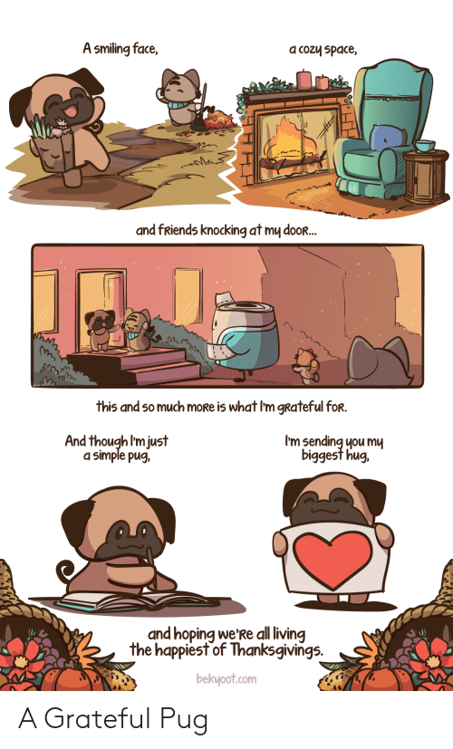 Friends, Space, and Living: A smiling face,  a cozy space,  and fRiends knocking at my dooR...  this and so much moRe is what I'm gRateful for.  I'm sending you mu  biggest hug.  And though I'm just  a simple pug,  and hoping we'Re all living  the happiest of Thanksgivings.  bekyoot.com A Grateful Pug