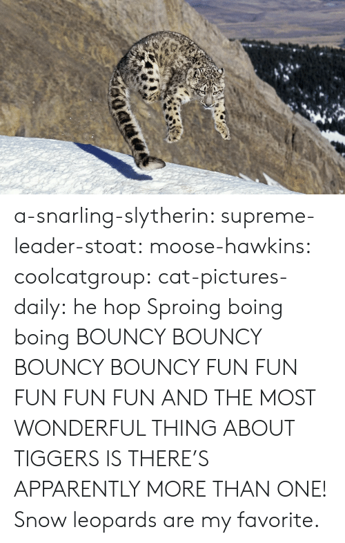 Slytherin: a-snarling-slytherin:  supreme-leader-stoat:  moose-hawkins:  coolcatgroup:  cat-pictures-daily: he hop  Sproing boing boing    BOUNCY BOUNCY BOUNCY BOUNCY FUN FUN FUN FUN FUN  AND THE MOST WONDERFUL THING ABOUT TIGGERS IS THERE'S APPARENTLY MORE THAN ONE!   Snow leopards are my favorite.