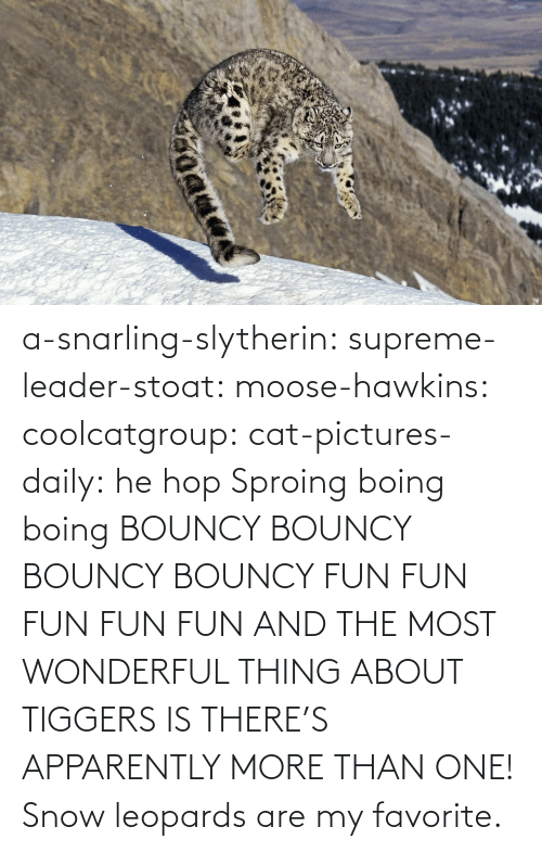 apparently: a-snarling-slytherin: supreme-leader-stoat:  moose-hawkins:  coolcatgroup:  cat-pictures-daily: he hop  Sproing boing boing    BOUNCY BOUNCY BOUNCY BOUNCY FUN FUN FUN FUN FUN  AND THE MOST WONDERFUL THING ABOUT TIGGERS IS THERE'S APPARENTLY MORE THAN ONE!   Snow leopards are my favorite.