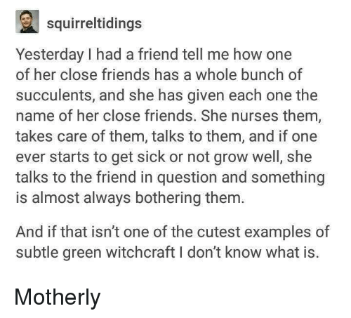 Friends, What Is, and Sick: a squirreltidings  Yesterday I had a friend tell me how one  of her close friends has a whole bunch of  succulents, and she has given each one the  name of her close friends. She nurses them,  takes care of them, talks to them, and if one  ever starts to get sick or not grow well, she  talks to the friend in question and something  is almost always bothering them  And if that isn't one of the cutest examples of  subtle green witchcraft I don't know what is. Motherly