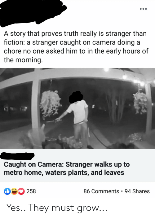 Camera, Home, and Metro: A story that proves truth really is stranger than  fiction: a stranger caught on camera doing a  chore no one asked him to in the early hours of  the morning  Caught on Camera: Stranger walks up to  metro home, waters plants, and leaves  86 Comments . 94 Shares  258 Yes.. They must grow...