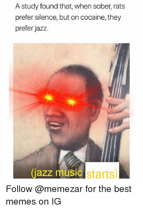 Memes, Music, and Best: A study found that, when sober, rats  prefer silence, but on cocaine, they  prefer jazz.  jazz music starts) Follow @memezar for the best memes on IG
