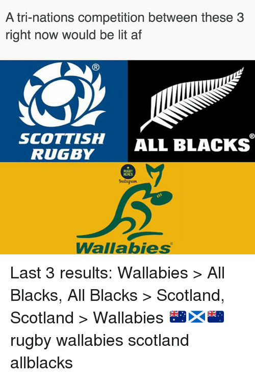 Af, Instagram, and Lit: A tri-nations competition between these 3  right now would be lit af  (R  SCOTTISH ALL BLACKS  RUGBY  RUGBY  MEMES  Instagram  Wallabies Last 3 results: Wallabies > All Blacks, All Blacks > Scotland, Scotland > Wallabies 🇦🇺🏴🇳🇿 rugby wallabies scotland allblacks