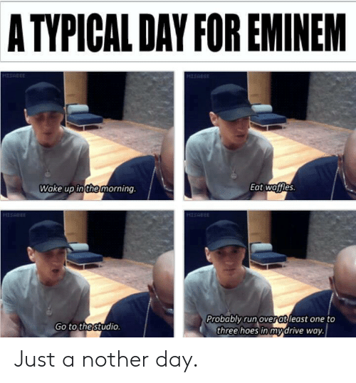 Eminem, Hoes, and Reddit: A TYPICAL DAY FOR EMINEM  HISRBEE  MISABEE  Eat woffles  Wake up in the morning.  H1SABEE  HISRBEE  Probably run over atleast one to  three hoes in mydrive way  Go to the studio. Just a nother day.