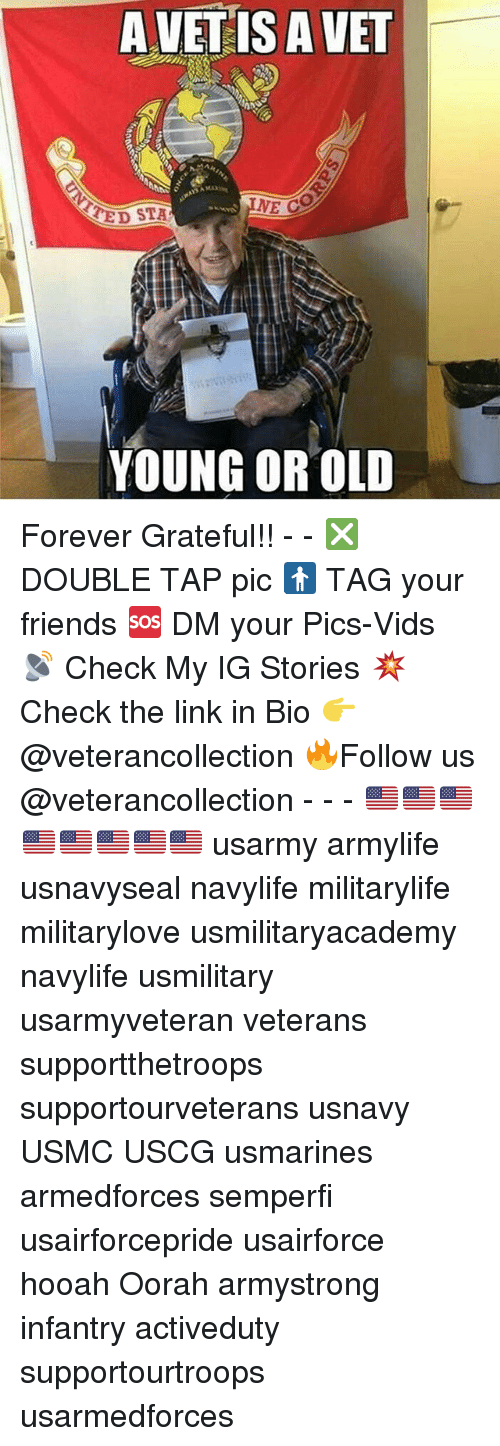 Friends, Memes, and Forever: A VETIS A VET  NE C  ED STA  YOUNG OR OLD Forever Grateful!! - - ❎ DOUBLE TAP pic 🚹 TAG your friends 🆘 DM your Pics-Vids 📡 Check My IG Stories 💥Check the link in Bio 👉@veterancollection 🔥Follow us @veterancollection - - - 🇺🇸🇺🇸🇺🇸🇺🇸🇺🇸🇺🇸🇺🇸🇺🇸 usarmy armylife usnavyseal navylife militarylife militarylove usmilitaryacademy navylife usmilitary usarmyveteran veterans supportthetroops supportourveterans usnavy USMC USCG usmarines armedforces semperfi usairforcepride usairforce hooah Oorah armystrong infantry activeduty supportourtroops usarmedforces