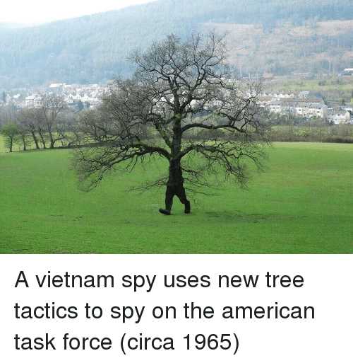 American, Tree, and Vietnam: A vietnam spy uses new tree tactics to spy on the american task force (circa 1965)