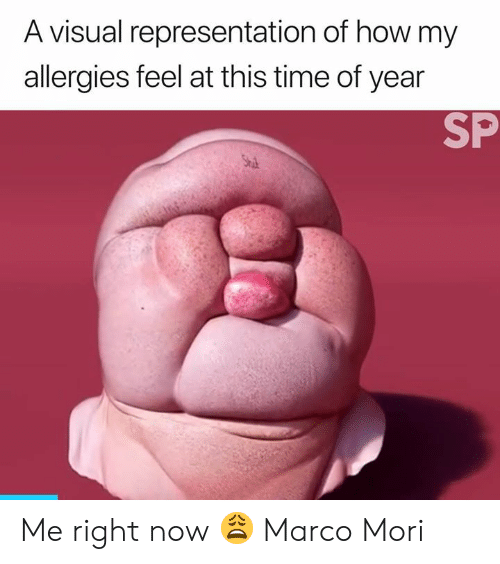 Time, How, and Allergies: A visual representation of how my  allergies feel at this time of year  SP  Stu Me right now 😩  Marco Mori