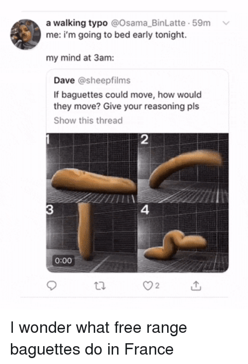 France, Free, and Mind: a walking typo @Osama_BinLatte 59m  me: i'm going to bed early tonight.  my mind at 3am:  Dave @sheepfilms  If baguettes could move, how would  they move? Give your reasoning pls  Show this thread  2  4  0:00  O2 I wonder what free range baguettes do in France