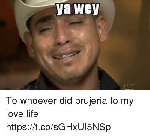 Funny Memes About Love Life : Best memes about brujeria