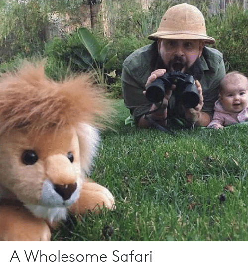 Safari, Wholesome, and A: A Wholesome Safari
