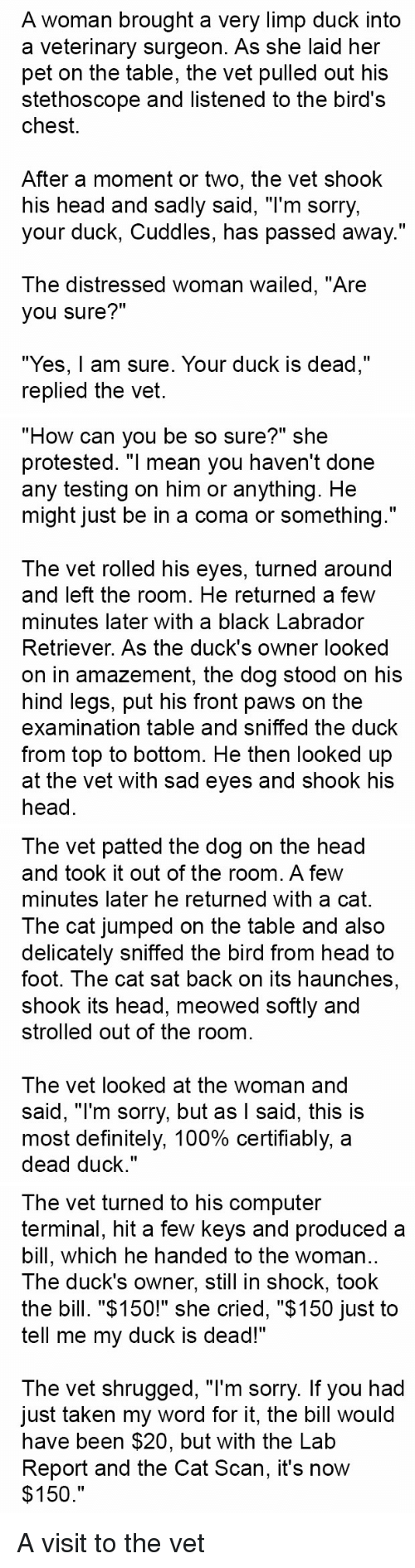 """cat scan: A woman brought a very limp duck into  a veterinary surgeon. As she laid her  pet on the table, the vet pulled out his  stethoscope and listened to the bird's  chest.  After a moment or two, the vet shook  his head and sadly said, """"I'm sorry,  your duck, Cuddles, has passed away.""""  The distressed woman wailed, """"Are  you sure?""""  """"Yes, am sure. Your duck is dead,""""  replied the vet.   """"How can you be so sure?"""" she  protested. """"I mean you haven't done  any testing on him or anything. He  might just be in a coma or something.""""  The vet rolled his eyes, turned around  and left the room. He returned a few  minutes later with a black Labrador  Retriever. As the duck's owner looked  on in amazement, the dog stood on his  hind legs, put his front paws on the  examination table and sniffed the duck  from top to bottom. He then looked up  at the vet with sad eyes and shook his  head   The vet patted the dog on the head  and took it out of the room. A few  minutes later he returned with a cat.  The cat jumped on the table and also  delicately sniffed the bird from head to  foot. The cat sat back on its haunches  shook its head, meowed softly and  strolled out of the room  The vet looked at the woman and  said, """"I'm sorry, but as I said, this is  most definitely, 100% certifiably, a  dead duck.""""   The vet turned to his computer  terminal, hit a few keys and produced a  bill, which he handed to the woman  The duck's owner, still in shock, took  the bill. """"$150!"""" she cried, """"$150 just to  tell me my duck is dead!""""  The vet shrugged, """"l'm sorry. If you had  Just taken my word for it, the bill Would  have been $20, but with the Lab  Report and the Cat Scan, it's now  $150 A visit to the vet"""
