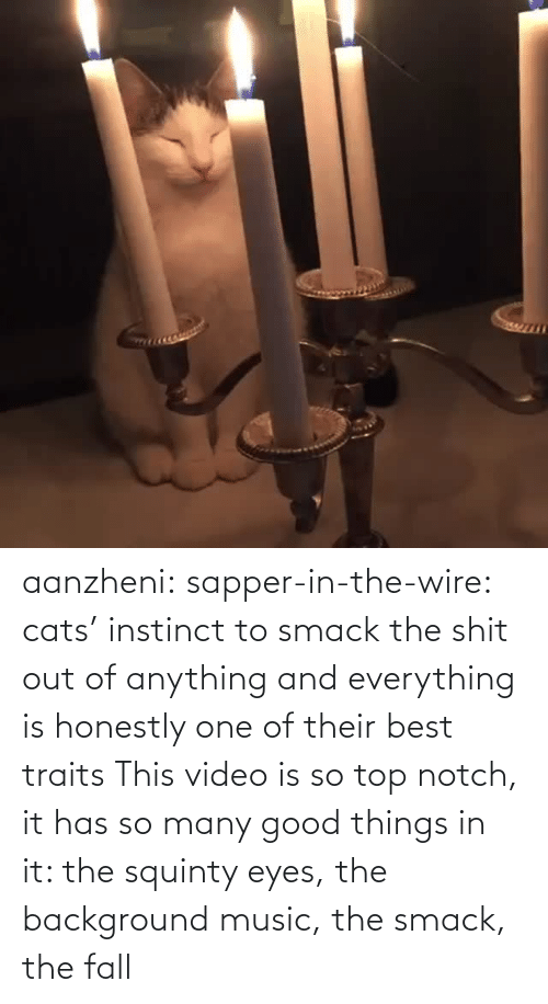 good things: aanzheni:  sapper-in-the-wire: cats' instinct to smack the shit out of anything and everything is honestly one of their best traits  This video is so top notch, it has so many good things in it: the squinty eyes, the background music, the smack, the fall