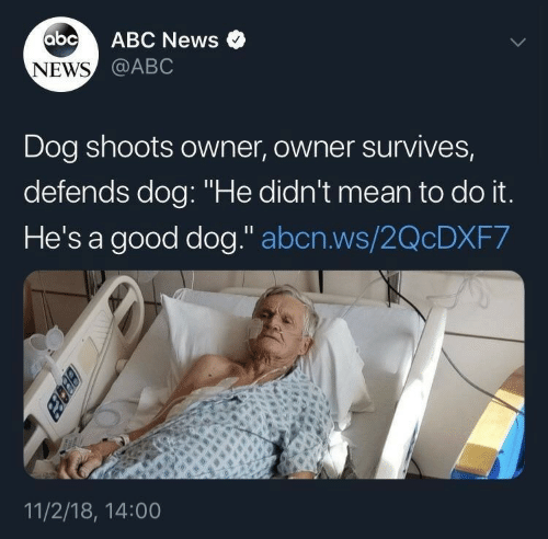 "Abc, News, and Abc News: abc  ABC News  NEWS @ABC  Dog shoots owner, owner survives,  defends dog: ""He didn't mean to do it.  He's a good dog."" abcn.ws/2QCDXF7  11/2/18, 14:00  BEcez"