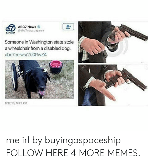 Dank, Memes, and News: ABC7 News  @abc7newsbayarea  DAY AREA  Someone in Washington state stole  a wheelchair from a disabled dog  abc7news/2bORwZ4  8/17/16, 9:29 PM me irl by buyingaspaceship FOLLOW HERE 4 MORE MEMES.