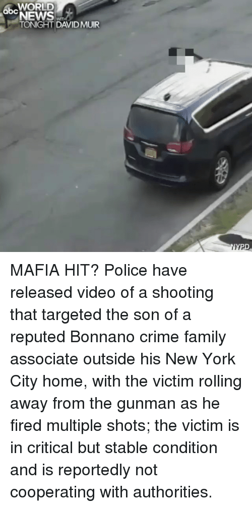 Crime, Family, and Memes: abcWORLD  NEWS  TONIGHT DAVIDMUIR MAFIA HIT? Police have released video of a shooting that targeted the son of a reputed Bonnano crime family associate outside his New York City home, with the victim rolling away from the gunman as he fired multiple shots; the victim is in critical but stable condition and is reportedly not cooperating with authorities.