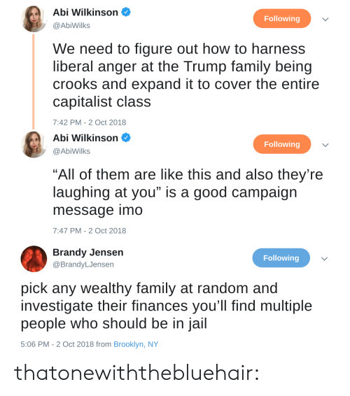 """Family, Gif, and Jail: Abi Wilkinson  @AbiWilks  Following  We need to figure out how to harness  liberal anger at the Trump family being  crooks and expand it to cover the entire  capitalist class  7:42 PM-2 Oct 2018   Abi Wilkinson  Following  @AbiWilks  """"All of them are like this and also they're  laughing at you"""" is a good campaign  message imo  7:47 PM-2 Oct 2018   Brandy Jensen  @BrandyLJensen  Following  pick any wealthy family at random and  investigate their finances you'll find multiple  people who should be in jail  5:06 PM - 2 Oct 2018 from Brooklyn, NY thatonewiththebluehair:"""