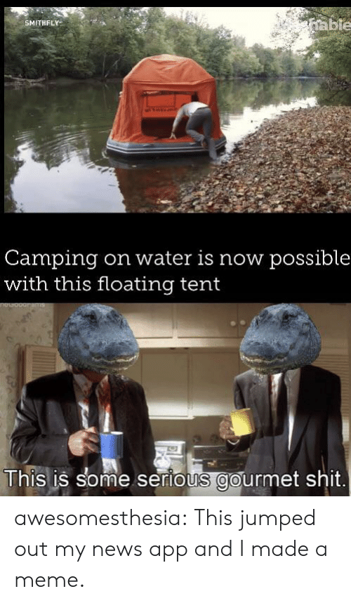 Meme, News, and Shit: able  SMITHFLY  Camping  with this floating tent  on water is now possible  This is some serious gourmet shit awesomesthesia:  This jumped out my news app and I made a meme.