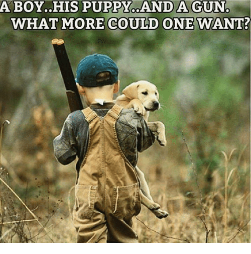 Memes, Puppy, and 🤖: ABOY..HIS PUPPY..AND A GUN  WHAT MORE COULD ONE WANT?