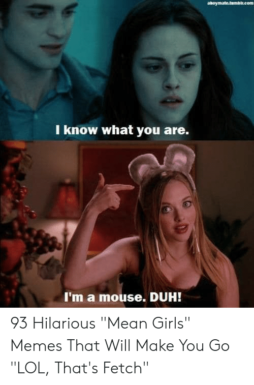 "Girls, Lol, and Memes: aboymate.tumblr.com  I know what you are.  I'm a mouse. DUH! 93 Hilarious ""Mean Girls"" Memes That Will Make You Go ""LOL, That's Fetch"""