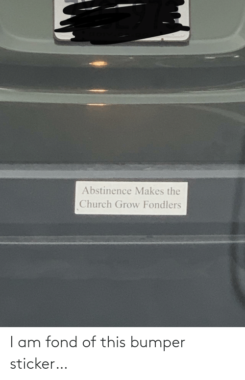 the church: Abstinence Makes the  Church Grow Fondlers I am fond of this bumper sticker…