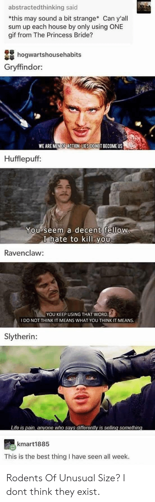 princess bride: abstractedthinking said  *this may sound a bit strange Can y'all  sum up each house by only using ONE  gif from The Princess Bride?  hogwartshousehabits  Gryffindor:  WE ARE MEN OF ACTION LIES DONOT BECOME US  Hufflepuff:  You seem a decent fellow  I hate to kill you  Ravenclaw:  YOU KEEP USING THAT WORD.  IDO NOT THINK IT MEANS WHAT YOU THINK IT MEANS.  Slytherin:  Life is pain, anyone who says differently is selling something  kmart1885  This is the best thing I have seen all week. Rodents Of Unusual Size? I dont think they exist.