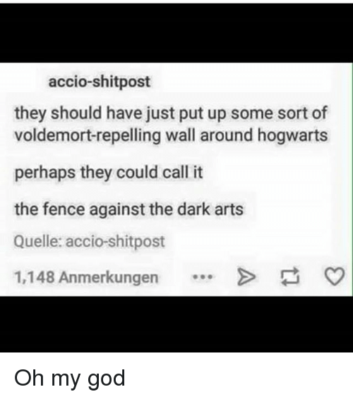 God, Memes, and Oh My God: accio-shitpost  they should have just put up some sort of  voldemort-repelling wall around hogwarts  perhaps they could call it  the fence against the dark arts  Quelle: accio-shitpost  1,148 Anmerkungen Oh my god