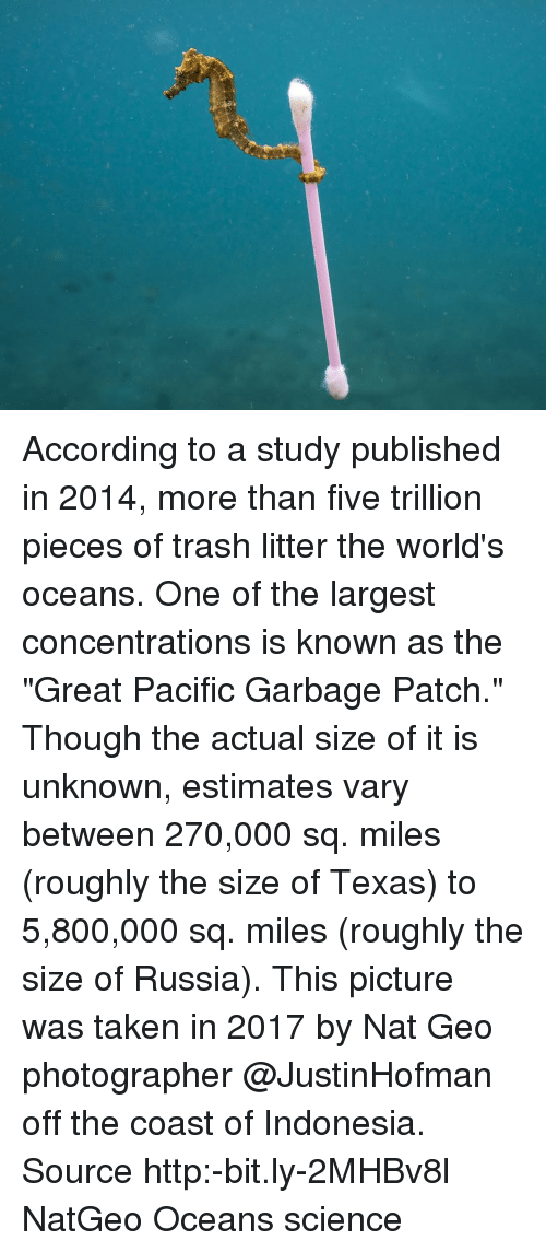 """Memes, Taken, and Trash: According to a study published in 2014, more than five trillion pieces of trash litter the world's oceans. One of the largest concentrations is known as the """"Great Pacific Garbage Patch."""" Though the actual size of it is unknown, estimates vary between 270,000 sq. miles (roughly the size of Texas) to 5,800,000 sq. miles (roughly the size of Russia). This picture was taken in 2017 by Nat Geo photographer @JustinHofman off the coast of Indonesia. Source http:-bit.ly-2MHBv8l NatGeo Oceans science"""