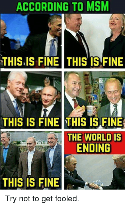 Memes, World, and According: ACCORDING TO MSM  THIS.IS FINE THIS TS FINE  THIS IS FINE THIS IS FIN  THE WORLD IS  ENDING  THIS IS FINE Try not to get fooled.