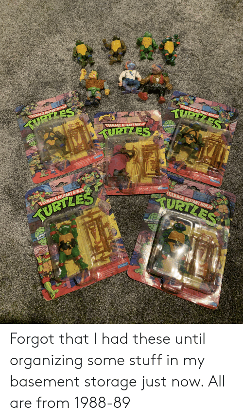 playmates: Ace 4  TEENAGE MUTANT NINJA  TEENAGE MUTANT NINJA  PTZES  URTZES  Ages 4 and up  hercsin hall  TEENAGE MUTANT NINJA  DONATEL  Weapon  LEONARDO  eapons Katana Bla  fat sheil  S  NTE  Nin  S000  No  mates  ng Turtlistic Arm Movement l  peluxe Weapons ASS ent  Belt & Weapons  Weapo icluded  Rack  ges 4 and u  Del Wea0o  Weapon els& Weapons  Movement  Rack incl ed  Ages 4 and up  No 5000  Amamg A  Deluxe Weapons Assortment  Weapons eit &WWeapons  ack tncluge  5001  No 5006  Tai MoveAwJAr anates  TEENAGE MUTANT NINJA  rURTLES  TEENAGE MUTANT NINJA  Haroasinahalf shell!  MICHAELANG  Weapon: Nunch  RAPHA  Weapon  Asst. No 5000  C3Dck No003  Playmates  Furtlistic Arm Movement  e Weapons Assortment  Weapons Belt &WeaponS  Reck induded!  ng Turtlistic Arra Mev  tuxe Wapos  Weap  Rack Forgot that I had these until organizing some stuff in my basement storage just now. All are from 1988-89