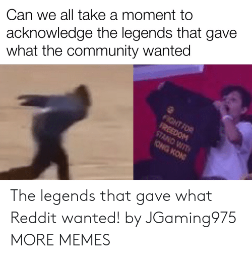 wit: acknowledge the legends that gave  what the community wanted  Can we all take a moment to  FIGHT FOR  FREEDOM  STAND WIT  ONG KON The legends that gave what Reddit wanted! by JGaming975 MORE MEMES