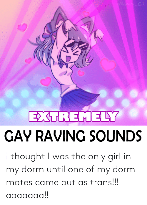raving: /AconaraCat  EXTREMELY  GAY RAVING SOUNDS I thought I was the only girl in my dorm until one of my dorm mates came out as trans!!! aaaaaaa!!