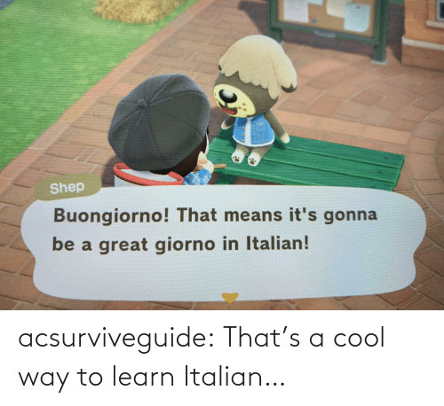 italian: acsurviveguide:  That's a cool way to learn Italian…