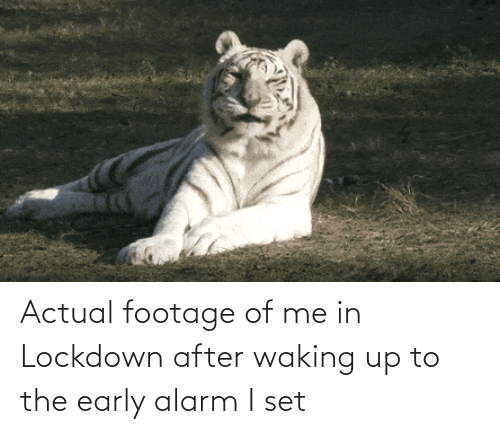 set: Actual footage of me in Lockdown after waking up to the early alarm I set