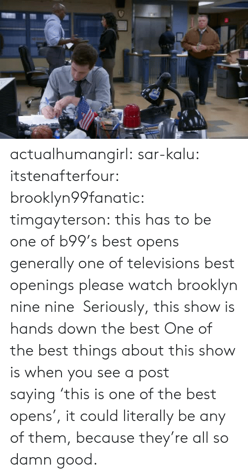 Target, Tumblr, and Brooklyn: actualhumangirl: sar-kalu:  itstenafterfour:  brooklyn99fanatic:  timgayterson: this has to be one of b99's best opens  generally one of televisions best openings  please watch brooklyn nine nine    Seriously, this show is hands down the best  One of the best things about this show is when you see a post saying 'this is one of the best opens', it could literally be any of them, because they're all so damn good.