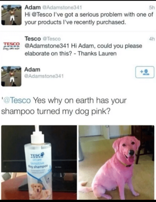 Earth, Pink, and Got: Adam @Adamstone341  Hi @Tesco l've got a serious problem with one of  5h  your products I've recently purchased.  Tesco @Tesco  4h  TESCO @Adamstone341 Hi Adam, could you please  elaborate on this? - Thanks Lauren  Adam  @Adamstone341  '@Tesco Yes why on earth has your  shampoo turned my dog pink?  TESC  Sensitive  dog shampoo