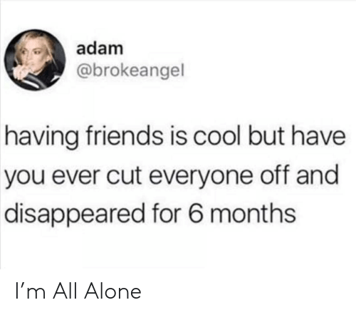 Being Alone, Friends, and Cool: adam  @brokeangel  having friends is cool but have  you ever cut everyone off and  disappeared for 6 months I'm All Alone