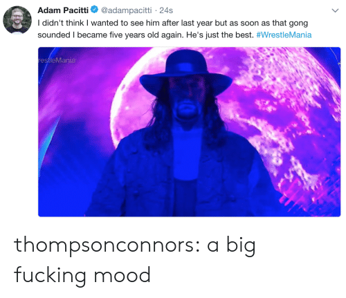 five years: Adam Pacitti  @adampacitti 24s  I didn't think I wanted to see him after last year but as soon as that gong  sounded I became five years old again. He's just the best. #WrestleMania  restleMania thompsonconnors:  a big fucking mood