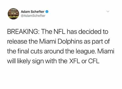 Nfl, Miami Dolphins, and Dolphins: Adam Schefter  nea@AdamSchefter  BREAKING: The NFL has decided to  release the Miami Dolphins as part of  the final cuts around the league. Miami  will likely sign with the XFL or CFL