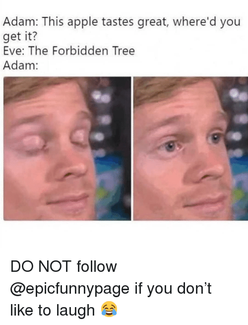 Apple, Memes, and Tree: Adam: This apple tastes great, where'd you  get it?  Eve: The Forbidden Tree  Adam: DO NOT follow @epicfunnypage if you don't like to laugh 😂