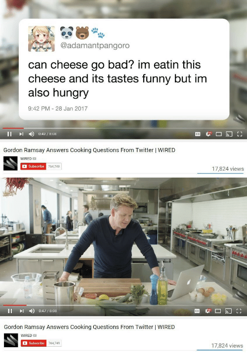 Bad, Funny, and Gordon Ramsay: @adamantpangoro  can cheese go bad? im eatin this  cheese and its tastes funny but im  also hungry  9:42 PM 28 Jan 2017  II D 0:42/8:08  Gordon Ramsay Answers Cooking Questions From Twitter | WIRED  WIRED  Subscribe  17,824 views   II I 0:47/8:08  Gordon Ramsay Answers Cooking Questions From Twitter | WIRED  WIRED  Subscribe  764,749  17,824 views