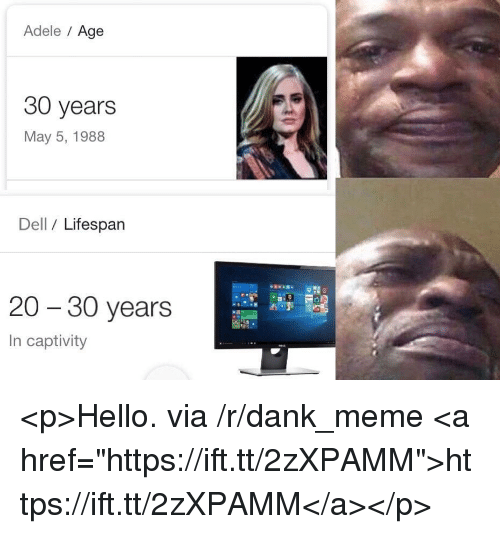 "Adele, Dank, and Dell: Adele Age  30 years  May 5, 1988  Dell / Lifespan  20 - 30 years  In captivity <p>Hello. via /r/dank_meme <a href=""https://ift.tt/2zXPAMM"">https://ift.tt/2zXPAMM</a></p>"