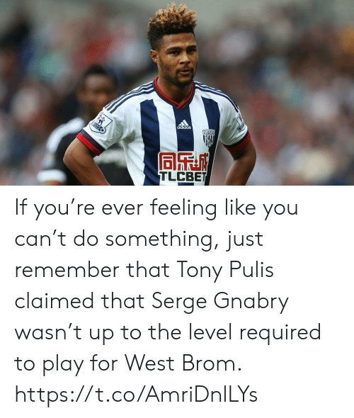do something: adidas  ALBION  AYS  TLCBET If you're ever feeling like you can't do something, just remember that Tony Pulis claimed that Serge Gnabry wasn't up to the level required to play for West Brom. https://t.co/AmriDnlLYs