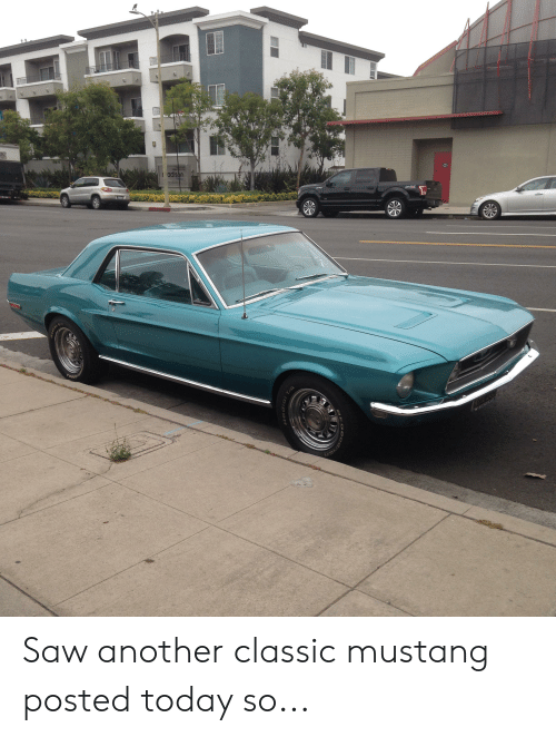 Saw, Mustang, and Today: adiso  rise  FGOO  HADIAL C Saw another classic mustang posted today so...