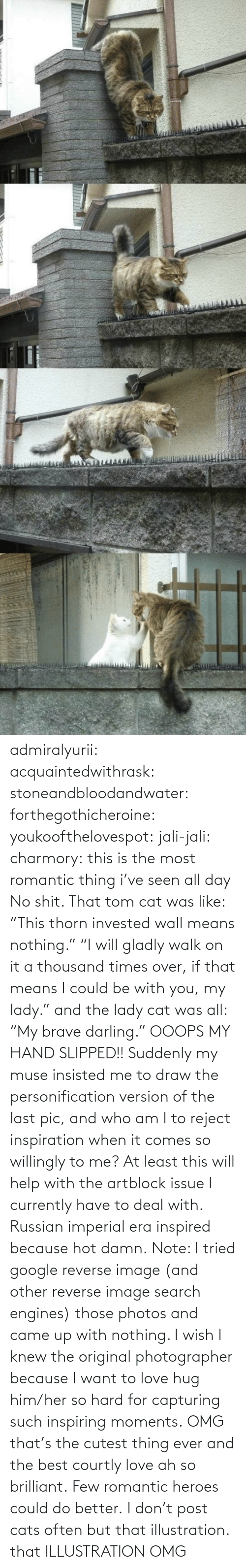 "Few: admiralyurii: acquaintedwithrask:  stoneandbloodandwater:  forthegothicheroine:  youkoofthelovespot:  jali-jali:  charmory:  this is the most romantic thing i've seen all day  No shit. That tom cat was like: ""This thorn invested wall means nothing."" ""I will gladly walk on it a thousand times over, if that means I could be with you, my lady."" and the lady cat was all: ""My brave darling."" OOOPS MY HAND SLIPPED!!  Suddenly my muse insisted me to draw the personification version of the last pic, and who am I to reject inspiration when it comes so willingly to me? At least this will help with the artblock issue I currently have to deal with. Russian imperial era inspired because hot damn. Note: I tried google reverse image (and other reverse image search engines) those photos and came up with nothing. I wish I knew the original photographer because I want to love hug him/her so hard for capturing such inspiring moments.  OMG that's the cutest thing ever and the best courtly love ah so brilliant.  Few romantic heroes could do better.  I don't post cats often but that illustration.  that ILLUSTRATION    OMG"
