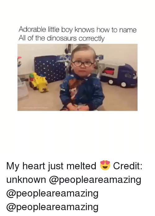 Memes, Dinosaurs, and Heart: Adorable little boy knows how to name  All of the dinosaurs correctly My heart just melted 😍 Credit: unknown @peopleareamazing @peopleareamazing @peopleareamazing