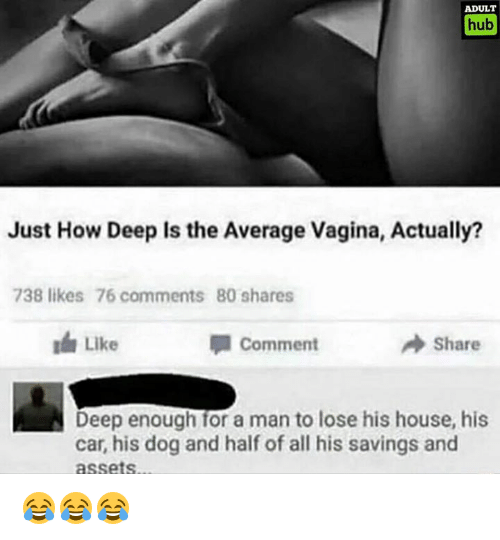 House, Vagina, and How: ADULT  hub  Just How Deep Is the Average vagina, Actually?  738 likes 76 comments 80 shares  A Comment  Share  N Deep enough for a man to lose his house, his  car, his dog and half of all his savings and  assets 😂😂😂