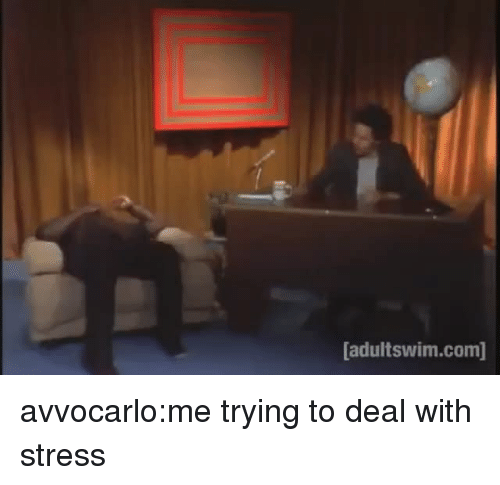 Tumblr, Blog, and Http: adultswim.com] avvocarlo:me trying to deal with stress