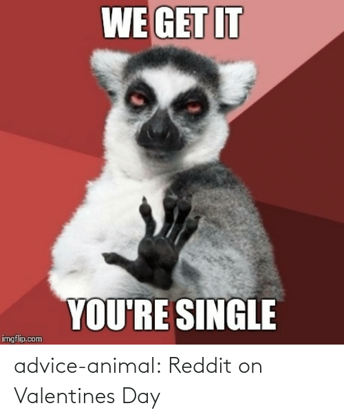 valentines: advice-animal:  Reddit on Valentines Day