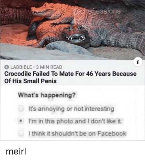 Facebook, Penis, and MeIRL: aefiessions  LADBIBLE 3 MIN READ  Crocodile Failed To Mate For 46 Years Because  Of His Small Penis  What's happening?  It's annoying or not interesting  .I'm in this photo and I don't like it  l think it shouldn't be on Facebook meirl
