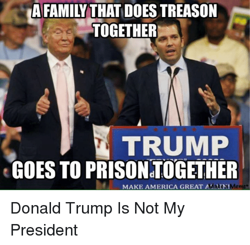 afamily-that-does-treason-together-trump-goes-to-prison-together-25118773.png